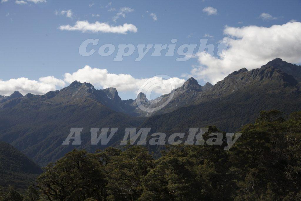 The Hollyford Valley Fiordland New Zealand