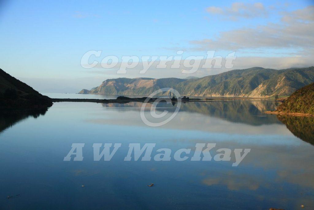 Wakapuaka Estuary and Delaware Bay