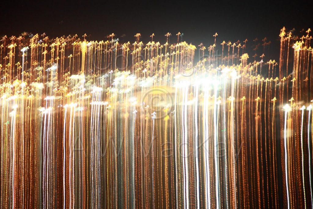 Light Stalks